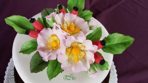 divé ruže