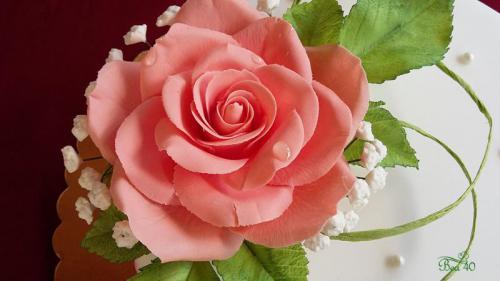 lososová ruža