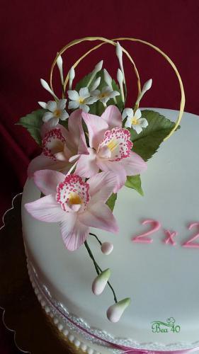 ružové orchidee
