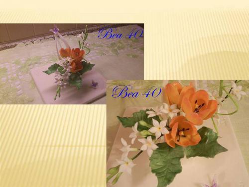 tulipány, stephanotis